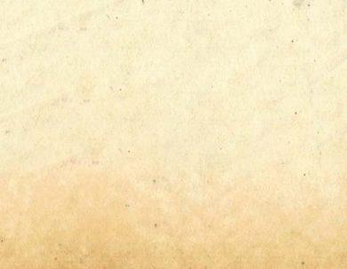EL VICERRECTORADO DE INVESTIGACIÓN, VINCULACIÓN Y POSGRADO