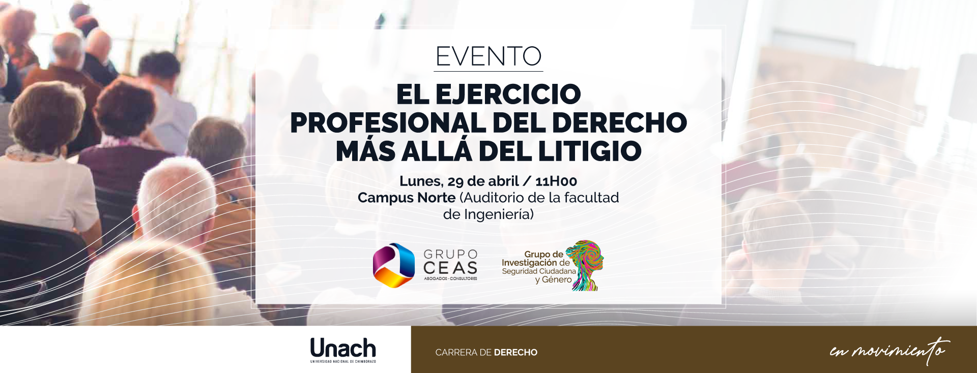 EL EJERCICIO PROFESIONAL DEL DERECHO MÁS ALLÁ DEL LITIGIO