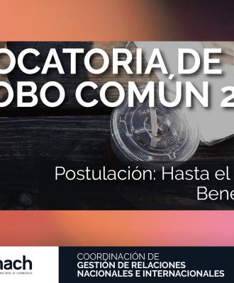 CONVOCATORIA DE BECAS GLOBO COMÚN 2019